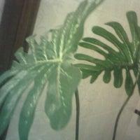 Photo taken at สวนพฤษศาสตร์ใบคามิลเลียเขตร้อนหน้าห้อง C3 SAmeD viLLA Villa by iPitch on 7/15/2011