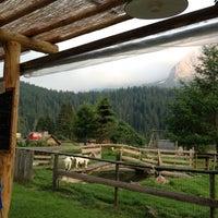Photo taken at Agriturismo Da Zaine by Na on 6/30/2012