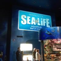 Photo taken at SEA LIFE Minnesota Aquarium by Josh O. on 2/18/2012