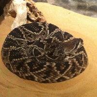 Photo taken at Doha Zoo by 👉Souheil C. on 3/23/2012
