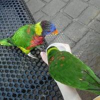 Photo taken at Columbus Zoo & Aquarium by Sarah R. on 8/14/2012