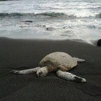 Photo taken at Punalu'u Black Sand Beach by Mark C. on 2/22/2012
