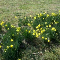 Photo taken at Bristow Funny Farm by Bev B. on 2/25/2012