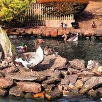 Photo taken at Olde Mystic Village by Rita R. on 2/17/2012