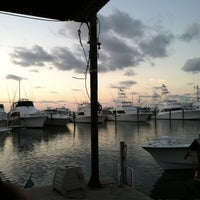 Photo taken at Conch Republic Seafood Company by Cheree D. on 6/13/2012