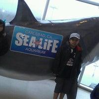 Photo taken at SEA LIFE Aquarium by Moira S. on 3/25/2012