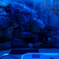 Photo taken at Oasis Hot Tub Garden by Eric H. on 2/4/2012
