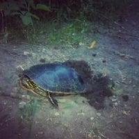 Photo taken at Fish Lake Park by Kelly M. on 6/30/2012