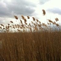 Photo taken at Csopak by Sandor on 3/11/2012