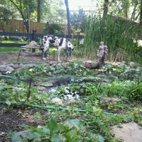 Photo taken at Betty's azalea ranch by Charlie R. on 6/25/2012