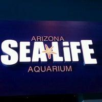 Photo taken at Sea Life Aquarium by David C. on 3/15/2012
