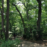 Photo taken at 三井の森公園 by Yoshiyuki O. on 5/20/2012