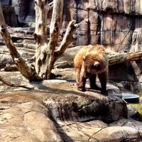 Photo taken at Indianapolis Zoo by Brian W. on 3/19/2012