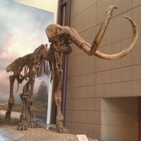 Photo taken at Milwaukee Public Museum, 3D Dome Theater & Planetarium by Mike B. on 5/2/2012