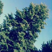 Photo taken at Parco Porporati by Flavia on 9/7/2012