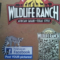 Photo taken at Natural Bridge Wildlife Ranch by Brenda D. on 3/12/2012