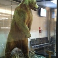 Photo taken at Ted Stevens Anchorage International Airport (ANC) by Rebekah S. on 9/1/2012