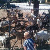 Photo taken at CJ Goat Farm by Zachary S. on 4/6/2012