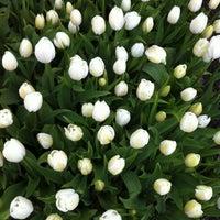 Photo taken at Botanische Tuin De Kruidhof by E T. on 4/15/2012