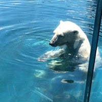 Photo taken at Columbus Zoo & Aquarium by Steph K. on 6/15/2012
