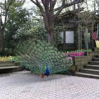 Photo taken at Cincinnati Zoo & Botanical Garden by Keith J. on 3/24/2012