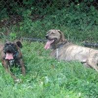 Photo taken at Oakton Dog Park by Devin B. on 9/7/2012