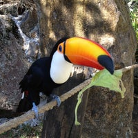 Photo taken at Gramado Zoo by Cristiana R. on 4/7/2012