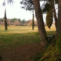 Photo taken at Parco Miralfiore by Alex P. on 2/26/2012