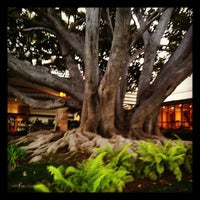 Photo taken at Fairmont Miramar Hotel & Bungalows by Amy L. on 8/6/2012