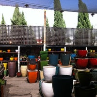 Photo taken at Potted by Christine M. on 8/7/2012