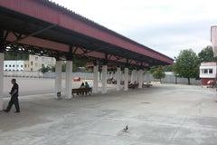 Новополоцкий автовокзал - Автовокзал