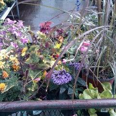 Photo taken at Art Knapp's Plantland & Florist by Andrew K. on 6/9/2012