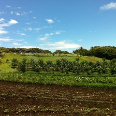 Photo taken at Hawi Nice Day Farms by Brooke D. on 7/13/2012