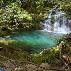 Photo taken at Rainforest Medicine Trail by Lindsey C. on 4/11/2014