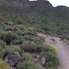Photo taken at Usery Mountain Regional Park by Kim R. on 3/30/2013