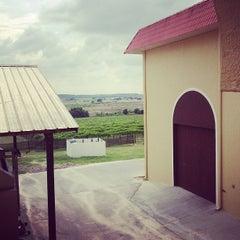 Photo taken at Lakeridge Winery & Vineyards by Iabou W. on 4/14/2013