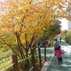 Photo taken at 양재천 산책로 (Yangjaecheon Trails) by DH K. on 11/3/2012