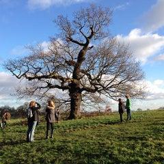 Photo taken at Hampstead Heath by Bill G. on 1/1/2013