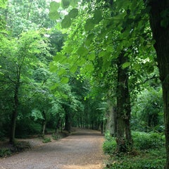 Photo taken at Hampstead Heath by Shelley H. on 7/23/2013