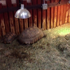 Photo taken at Reptile Island by Q N. on 1/23/2014