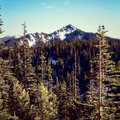 Photo taken at Olympic National Park by Jeffrey H. on 3/8/2015