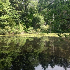 Photo taken at Mass Audubon Ipswich River Wildlife Sanctuary by Joseph D. on 7/7/2013