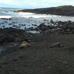 Photo taken at Punalu'u Black Sand Beach by vincent v. on 6/1/2014