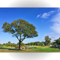 Photo taken at Belleview Biltmore Golf Club by Ramsey M. on 12/29/2014