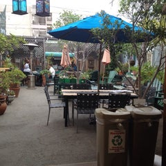 Photo taken at Jungle Java by Ashley N. on 9/4/2014