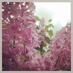 Photo taken at Boucherville by Yan P. on 5/24/2014