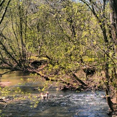 Photo taken at Cherokee Park by Brittney H. on 4/19/2014