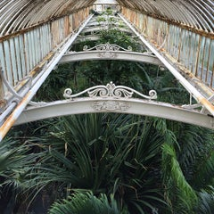 Photo taken at Palm House by Ben G. on 3/9/2015