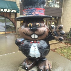 Photo taken at Punxsutawney Phil by Delaware P. on 1/3/2015