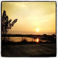 Photo taken at Wisata Anyar Mangrove (WAM) by mirna i. on 5/28/2013